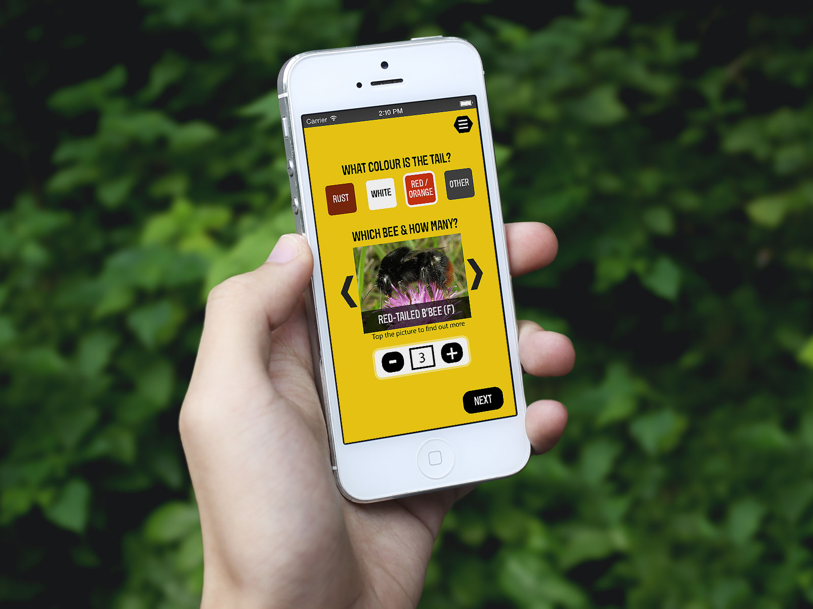 Great British Bee Count for iPhone
